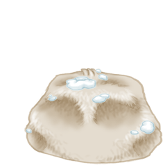 Adotta un Mouse Neve