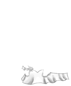 Mouse Yeti