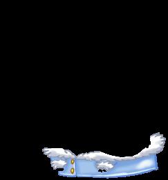 Adotta un Mouse Yeti