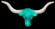 Testa di bisonte
