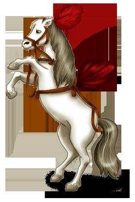 Cavallo da circo
