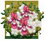 Flower Ball Ricevimento di matrimonio