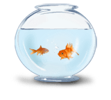Ciotola di pesce