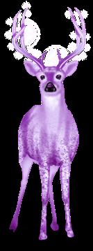 Renna Di Neve