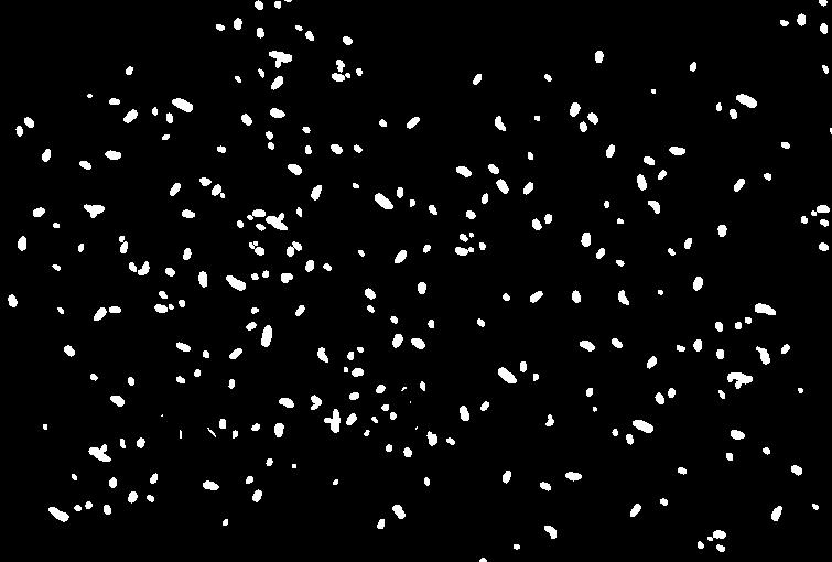 Pioggia di coriandoli