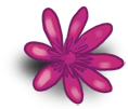 Fiore grande