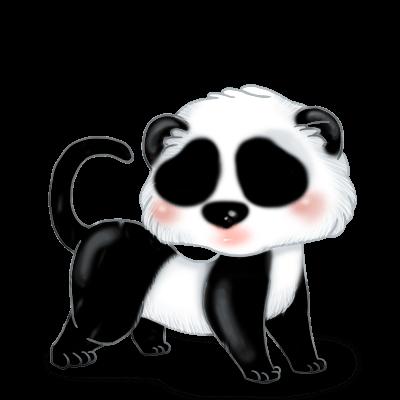 Adotta un Furetto Panda