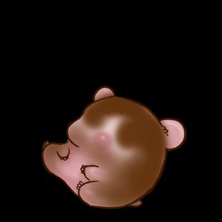 Adotta un Criceto Cioccolato al latte