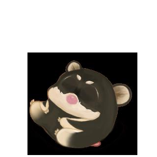 Adotta un Criceto Shiba Inu