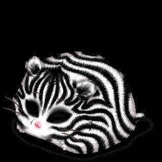 Adotta un Criceto Zebra