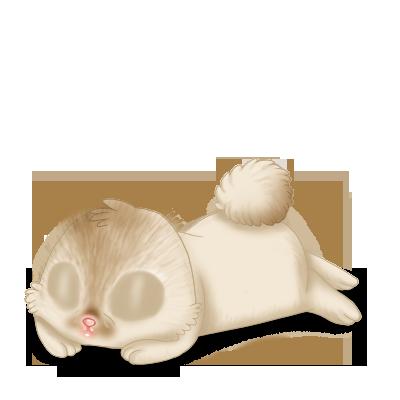 Adotta un Coniglio Crema