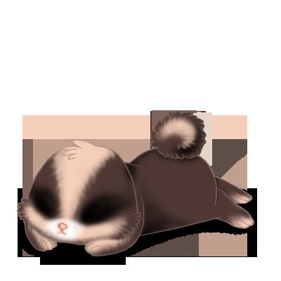 Adotta un Coniglio Leone