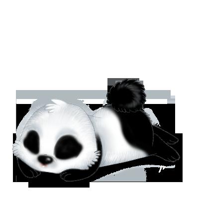Adotta un Coniglio Panda