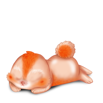 Adotta un Coniglio Poiledecarotte