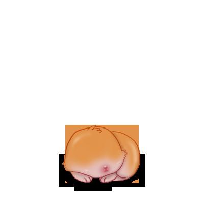 Adotta un Coniglio Ram rosso
