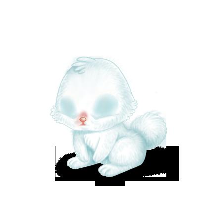 Adotta un Coniglio Neve