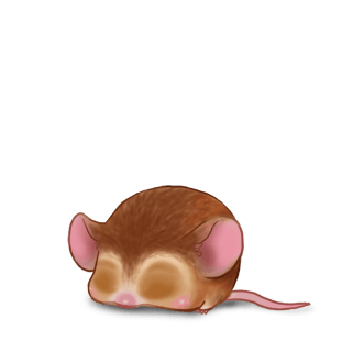 Mouse Encre