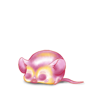 Adotta un Mouse Marrone a strisce