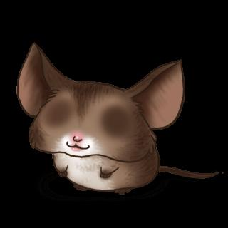 Adotta un Mouse Pipistrello