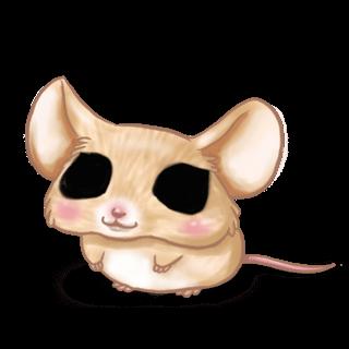 Adotta un Mouse Cinese