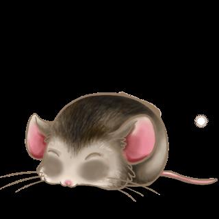 Adotta un Mouse Asiatico