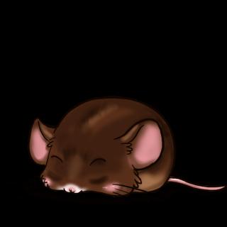 Adotta un Mouse Cioccolato