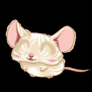 Adotta un Mouse Crema