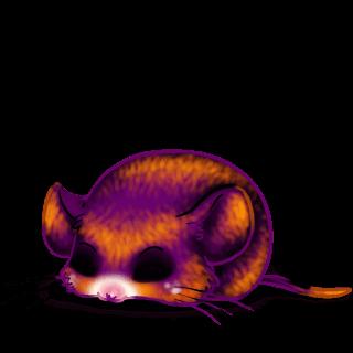 Adotta un Mouse Hallorora