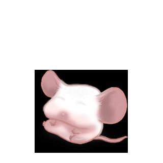 Adotta un Mouse Grigia