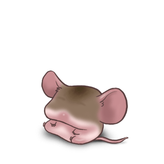 Adotta un Mouse Caffè