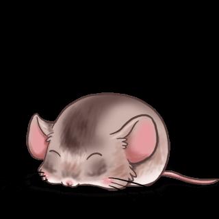 Adotta un Mouse Classico