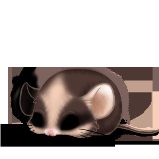 Adotta un Mouse Mandou