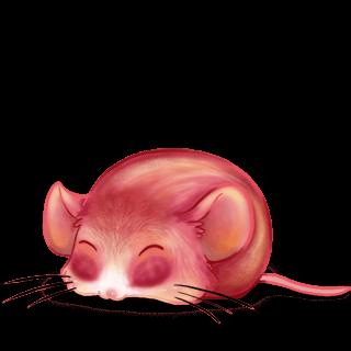Adotta un Mouse Pesca