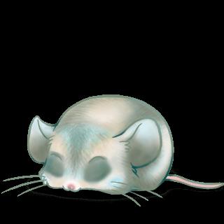 Adotta un Mouse Ronard