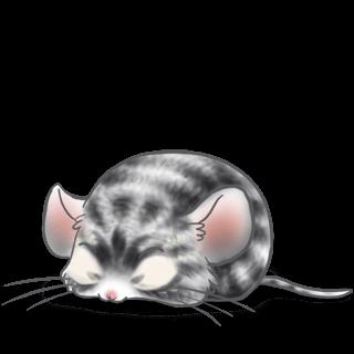 Adotta un Mouse Graffi