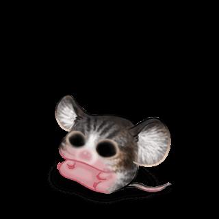 Adotta un Mouse Simba