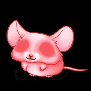 Adotta un Mouse Morbidezza