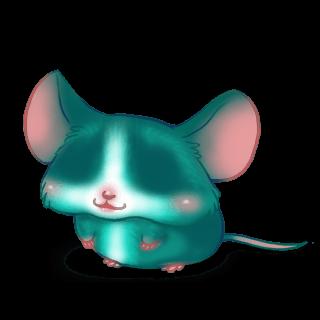 Adotta un Mouse Turchese