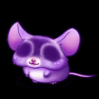 Adotta un Mouse Liz