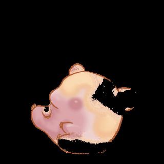 Adotta un Criceto Porcellana