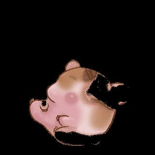 Adotta un Criceto Crema