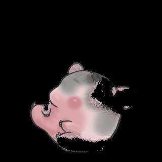 Adotta un Criceto Caramella mou