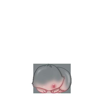 Adotta un Coniglio Siamese