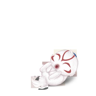 Adotta un Coniglio Okami