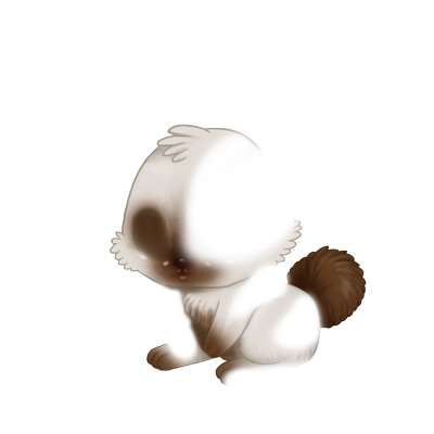 Adotta un Coniglio Mandou