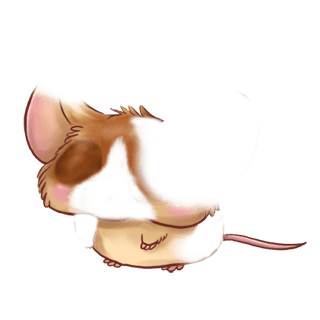 Adotta un Mouse Choco