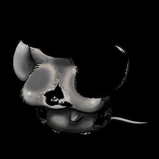 Adotta un Mouse Caramello