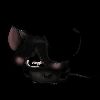 Adotta un Mouse Angora
