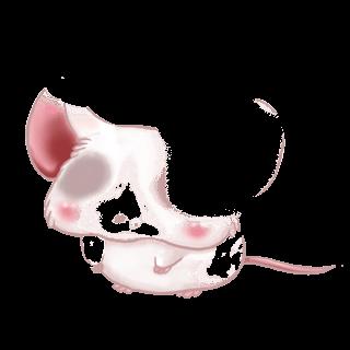 Adotta un Mouse Famiglia