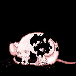 Adotta un Mouse Paillettes